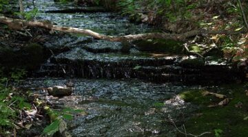 Got Creeks? What Is A Blue Line Stream, Anyway?