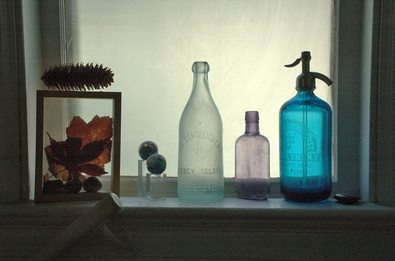 antique-looking-bottles-in-window-flatbush-gardener.jpg
