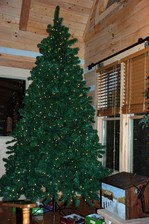bare-christmas-tree-inside-log-home.jpg