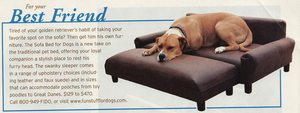 dog-furniture.jpg