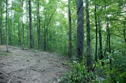 final-view-of-homesite-from-top-of-driveway2.jpg