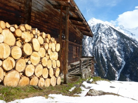firewood-for-wood-heating-system
