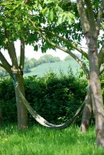 hammock-by-Dan-Shirley.jpg