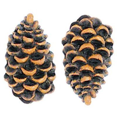 pinecone-drawer-pulls.jpg