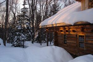 Should You Remove Snow From Your Roof Or Not?