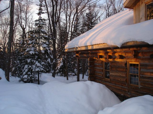 Should You Remove Snow From Your Roof Or Not The Log