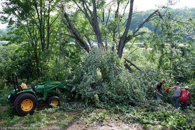 tree-crew-removing-storm-damaged-tree.jpg
