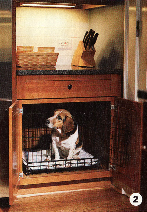 Fun Decorating Ideas For You And Your Dog In Your New Home